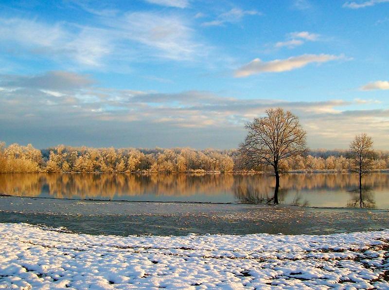 Lonjsko polje – zeleno plava oaza na rubu grada Kutine